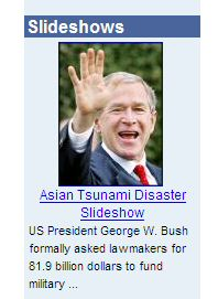 Bush Disaster